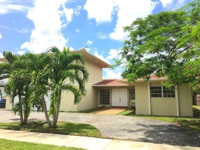 Miami Single Family Home For Sale: 311 NW 201st Street