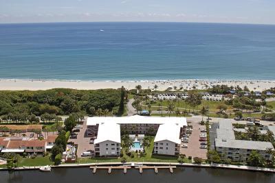 Ocean Ridge Rental For Rent: 6530 Ocean Boulevard #301