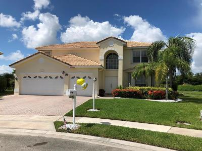 Boca Raton Single Family Home For Sale: 12782 Spikerush Circle