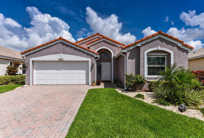Boynton Beach Single Family Home For Sale: 6941 Ashton Street