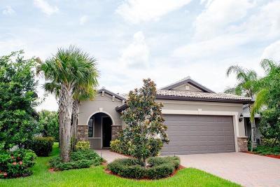 Port Saint Lucie Single Family Home For Sale: 576 SE Monet Drive