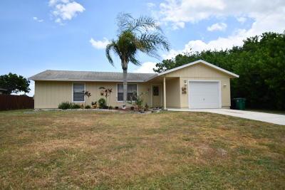 Port Saint Lucie Single Family Home For Sale: 686 SW Violet Avenue