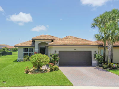 Lake Worth Single Family Home For Sale: 7164 Damita Drive