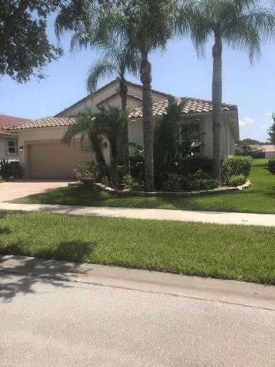 Port Saint Lucie Single Family Home For Sale: 422 NW Springview Loop