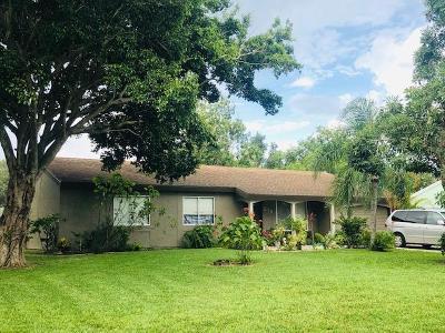 Port Saint Lucie Single Family Home For Sale: 219 SW Bridgeport Drive