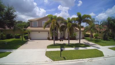 West Palm Beach Single Family Home For Sale: 9416 Coventry Lake Court
