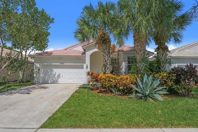 Boynton Beach Single Family Home For Sale: 10852 Madison Drive