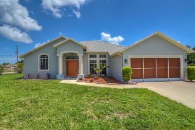 Port Saint Lucie Single Family Home For Sale: 912 SW Haas Avenue