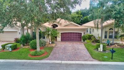 Delray Beach Single Family Home For Sale: 6924 Belmont Shore Drive