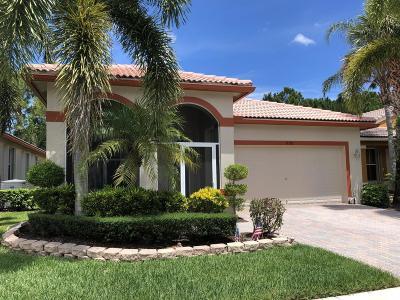 Boynton Beach Single Family Home For Sale: 8207 Bellafiore Way