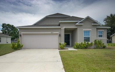 Port Saint Lucie Single Family Home For Sale: 2058 SW Beauregard Street
