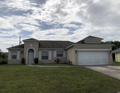 Port Saint Lucie Single Family Home For Auction: 4635 SW Vahalla Street