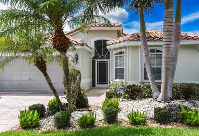 Boynton Beach Single Family Home For Sale: 7370 Haviland Circle
