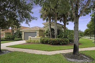 Delray Beach Single Family Home For Sale: 9580 Tivoli Isles Boulevard