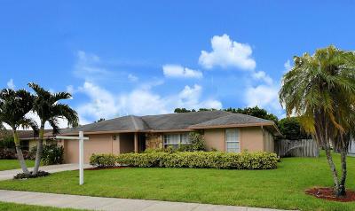 Royal Palm Beach FL Single Family Home For Sale: $329,999