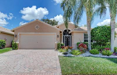 Boynton Beach Single Family Home For Sale: 8170 Duomo Circle