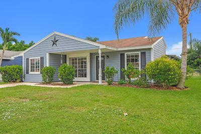 Boynton Beach Single Family Home For Sale: 9127 Chrysanthemum Drive