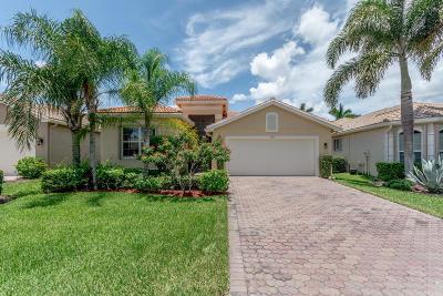 Boynton Beach Single Family Home For Sale: 9153 Meridian View Isle(S)