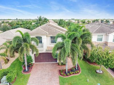 Boynton Beach Single Family Home For Sale: 11548 Rock Lake Terrace