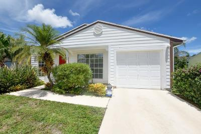 Boynton Beach Single Family Home For Sale: 8942 Grey Eagle Drive