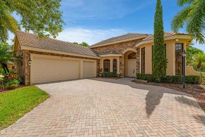 Wellington Single Family Home For Sale: 3599 Collonade Drive