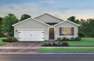 Single Family Home For Sale: 3024 NE Skyview Lane
