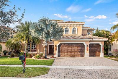 Royal Palm Beach Single Family Home For Sale: 544 Edgebrook Lane