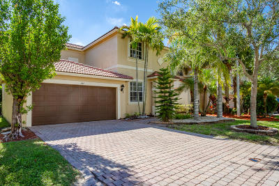 Coral Springs Single Family Home For Sale: 847 NW 127 Avenue