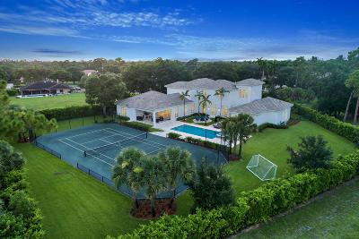 Palm Beach Gardens Single Family Home For Sale: 7744 Bold Lad Road