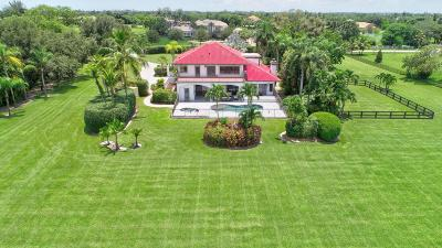 Delray Beach  Single Family Home For Sale: 10321 El Paraiso Place