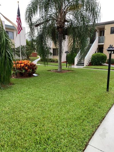 Martin County, St. Lucie County Condo For Sale: 1501 NE 13th Terrace #3