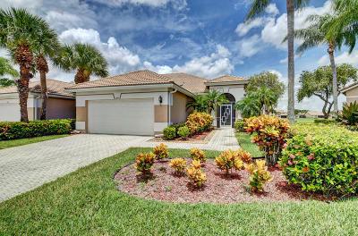 Boynton Beach Single Family Home For Sale: 6899 Cairnwell Drive