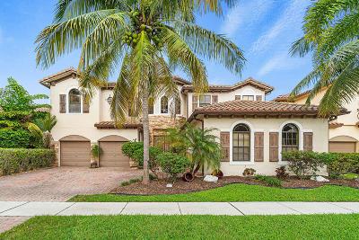 Boynton Beach Single Family Home For Sale: 4073 Artesa Drive