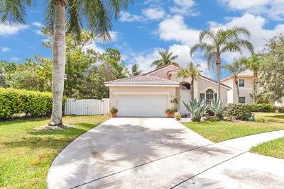 Greenacres Single Family Home For Sale: 6542 Spring Meadow Drive