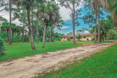 Jupiter Single Family Home For Sale: 17472 Rocky Pines Road