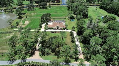 Palm Beach Gardens Single Family Home For Sale: 13262 Running Water Road