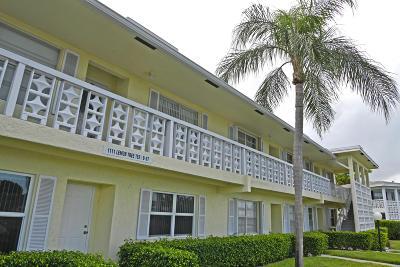 Delray Beach Condo Contingent: 1111 Lemon Tree Terrace #203