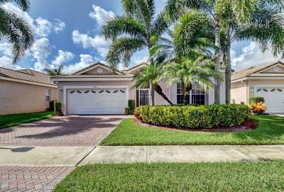 Boynton Beach Single Family Home For Sale: 9740 Lemonwood Way