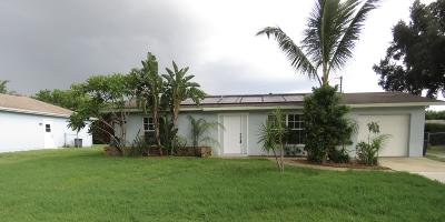 Port Saint Lucie Single Family Home For Sale: 371 SW Violet Avenue