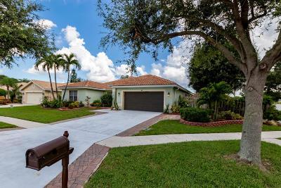 Boynton Beach Single Family Home For Sale: 5657 Descartes Circle