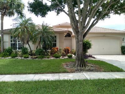 Boynton Beach Single Family Home For Sale: 11565 Puerto Boulevard