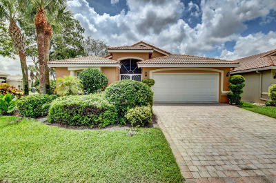 Delray Beach Single Family Home For Sale: 6896 Viale Elizabeth