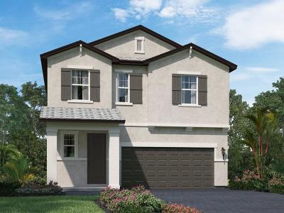 Lake Worth Single Family Home For Sale: 1821 Lake Cove Drive