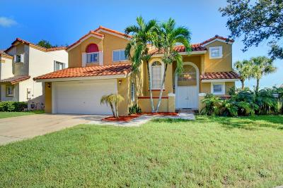 Boca Raton Single Family Home For Sale: 10767 Palm Spring Drive