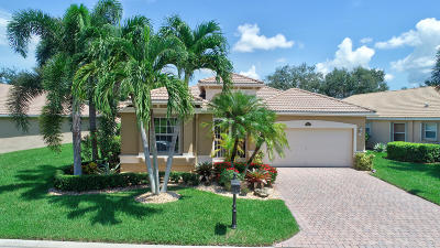 Lake Worth Single Family Home For Sale: 9815 San Luca Street