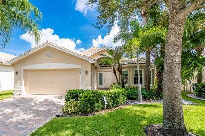 Boynton Beach Single Family Home For Sale: 6649 Hawaiian Avenue
