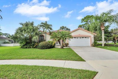 Jupiter Single Family Home For Sale: 5980 Loxahatchee Pines Dr. Drive