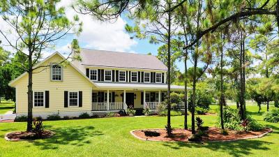 Palm Beach County Single Family Home For Sale: 17156 Shetland Lane