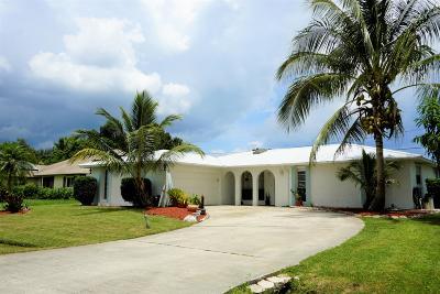 Port Saint Lucie Single Family Home For Sale: 421 SE Skipper Lane