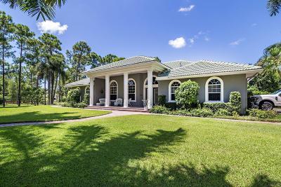 Palm Beach Gardens Single Family Home For Sale: 14689 Crazy Horse Lane